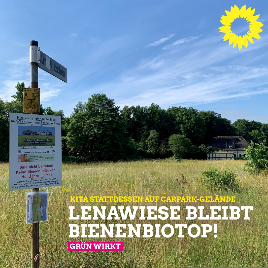 Lenawiese bleibt Bienenbiotop 🐝